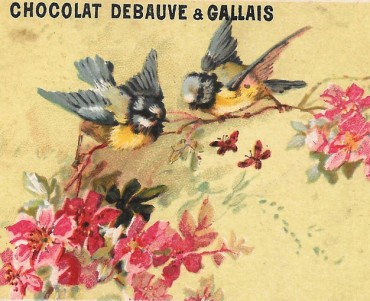 Images Debauve et Gallais (06)